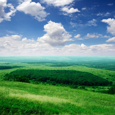 horizon over land: Wide valley with groups of trees. View from top of mountain
