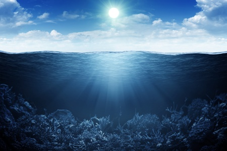 underwater: Sky, waterline and underwater background Stock Photo