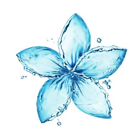 agua: flor hecha de salpicaduras de agua