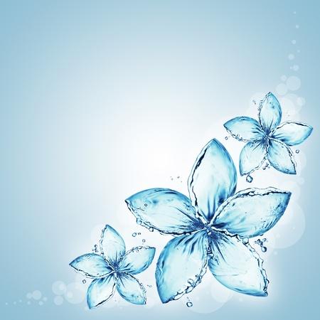 lirio acuatico: flores hechas de salpicaduras de agua Foto de archivo