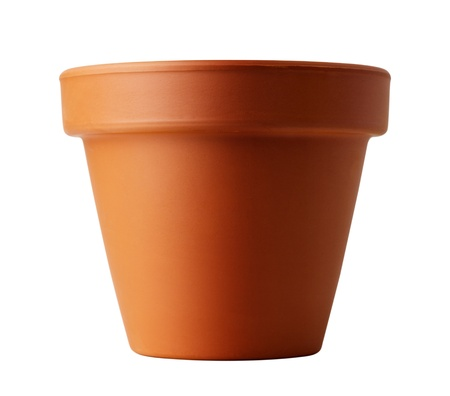flower pot isolated on white Stock Photo - 13808689
