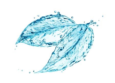 splash de agua: Hoja hecha de salpicaduras de agua