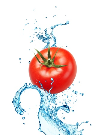 Tomato on water splash isolated on white background photo