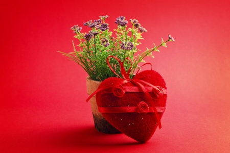 roses in vase: Flower in the pot decorated by heart Stock Photo