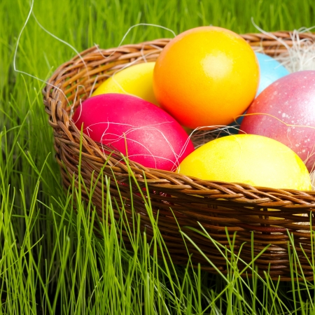 easter basket: Painted Colorful Easter Eggs in Grass