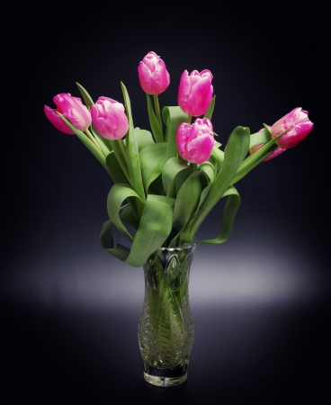 tulips in vase: Bouquet of tulips in glass vase on black background