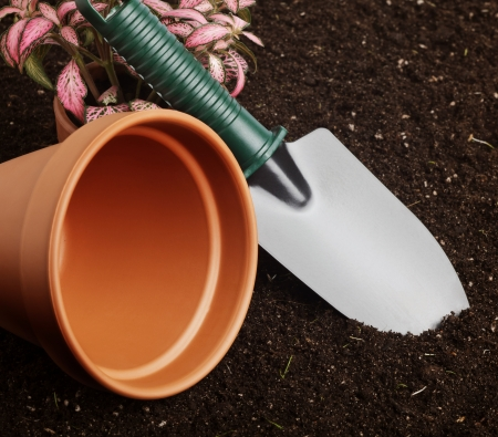 Close-up of the organic soil, spade and flower in pot