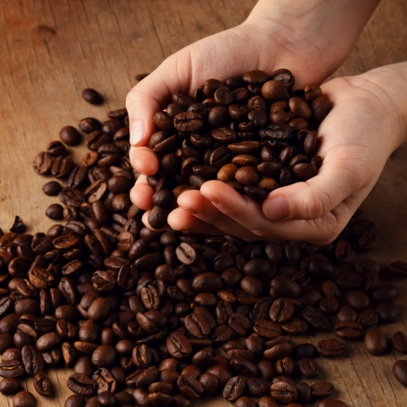 coffee grains: coffee grains on the hands Stock Photo