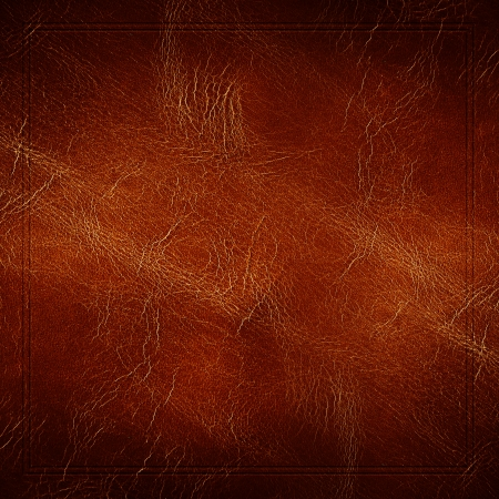 bumped: leather texture background