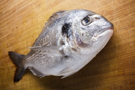 sparus: Fish on wooden background