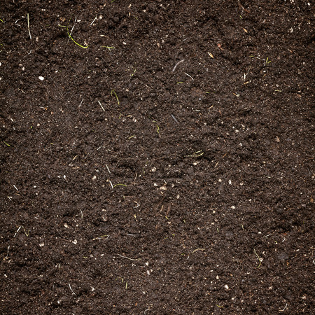 Soil texture Stock Photo - 26793218