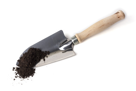 spades: Gardening spade in soil isolated on white