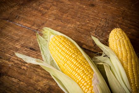 yellow corn: Corn cobs on vintage wood background