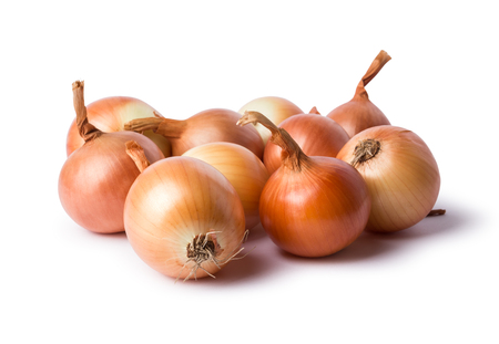 kulinarne: Fresh onion bulbs isolated on white background Zdjęcie Seryjne