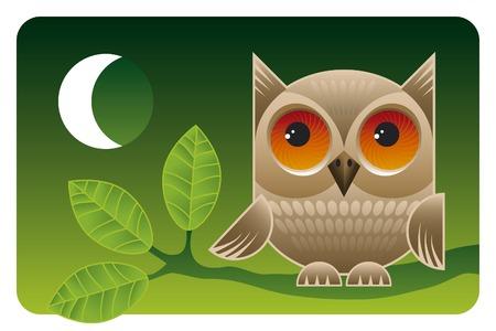 Big eyes. Cute owl sitting on a branch at night.