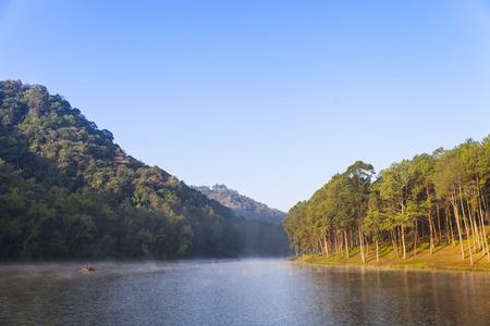 morning pine forest at Pang Ung. Mae Hong Son. Thailand photo