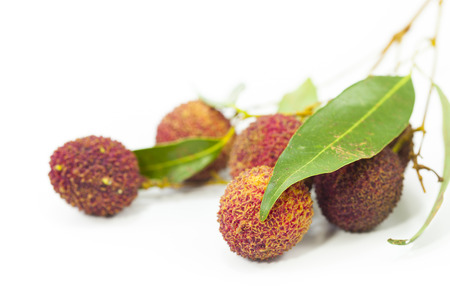 lychees: Lychees on white background