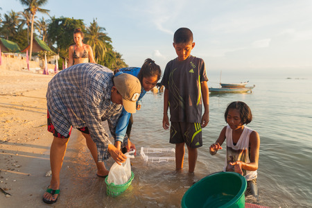 SURAT THANI, THAILAND - MAY 31: Children looking for wedge shells on the beach on May 31,2015 in Koh Phangan, Surat Thani, Thailand.