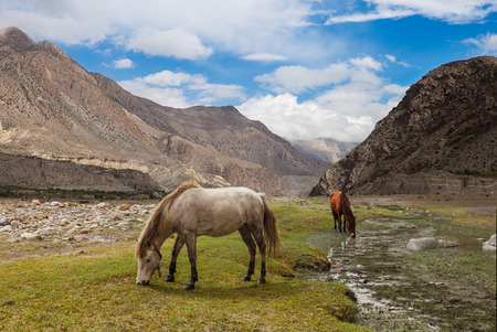 Himalayas mountains landscape, Annapurna range.