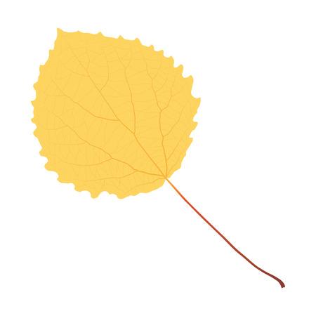 autumn yellow leaf aspen Illustration