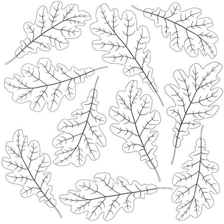 contoured: contoured oak leaves Illustration