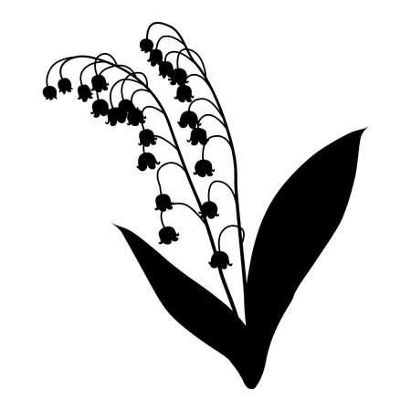 silhouette of lily of the valley isolated on white background