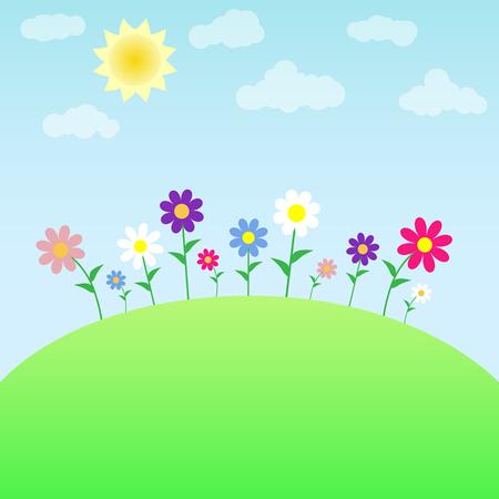 Flowers on the meadow. Illusztráció