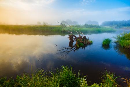 Colorful sunrise landscape. Old dry snag lying in river Stock fotó