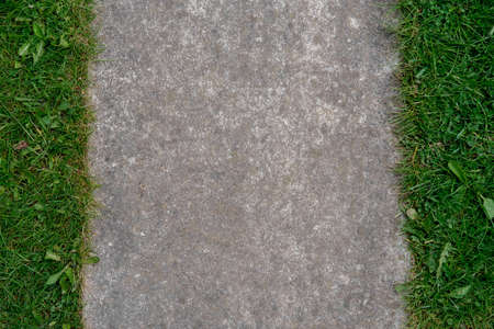 Vertical background of concrete and grass left and right.