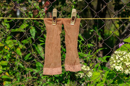 Thin brown women's socks hang from a rope and dry in the sun against the backdrop of a garden and a rusty mesh fence.