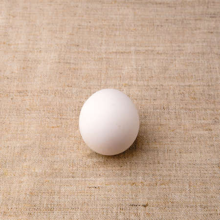 One white egg lies in the center of a table covered with a rag textured tablecloth and casts a small dark shadow in a square proportion.