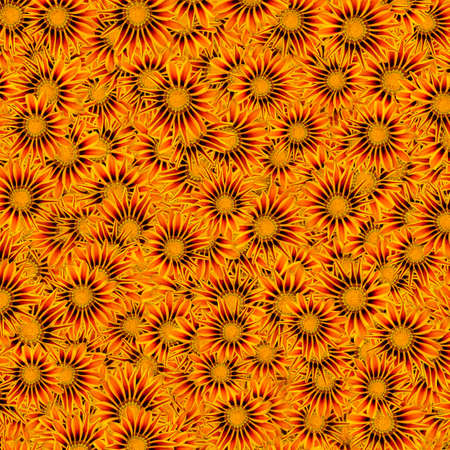 Background from the flower bud of the Gatsania flower, of the Aster family, with yellow-red petals blackening towards the center, randomly distributed and overlapping each other. Stock fotó