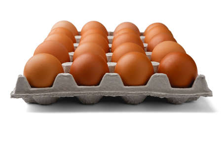 Tray of eggs isolated on white