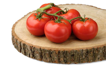 Red tomatoes with a green branch lie on a wooden board from a tree cut with bark and are isolated on a clean white background.
