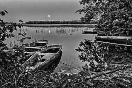 water s edge: vecchia barca da fiume