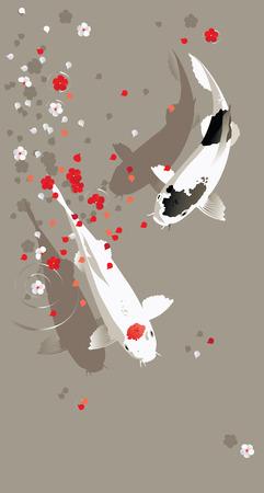 pez carpa: Ilustración del vector del tradicional sagrado japonés Koi peces carpa