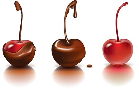 Vector illustration of ripe cherries covered with chocolate