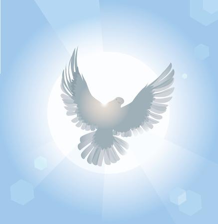 Ilustración vectorial de paloma blanca difusión de las alas en la luz del sol Foto de archivo - 34783003