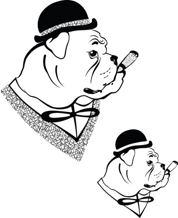 impudent: Vector illustration of a dog in vintage hat with a cigar in mouth
