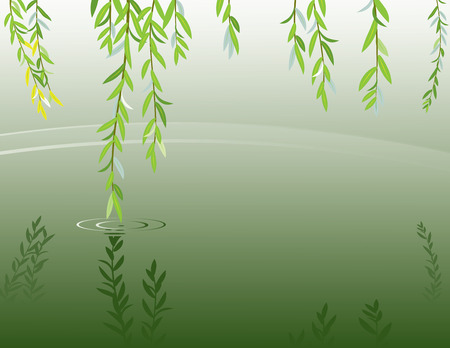 Vector illustration of willow brancheas at pond surface