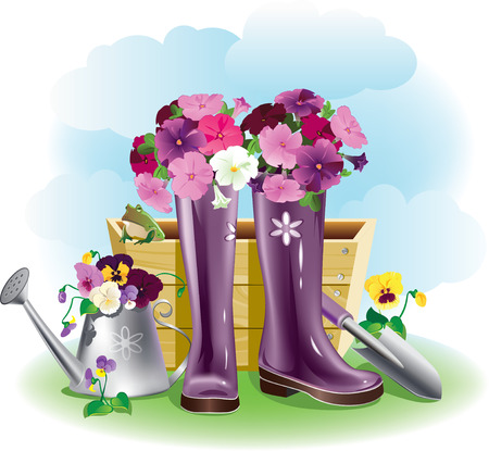 gumboots: Flowers petuni in gumboots beside garden tools
