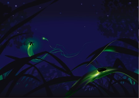 Vector illustration of fireflies in grass at night Çizim