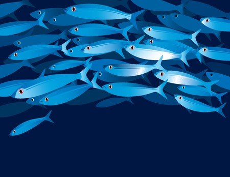 shoal: Vector illustration of shoal of fishes in water depth