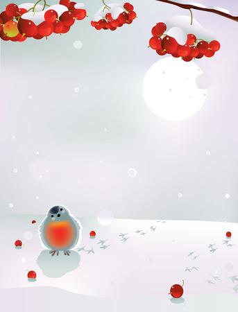 Vector illustration of bullfinch and berries in winter 일러스트
