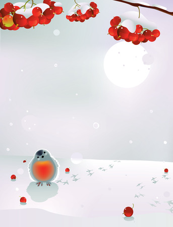 Vector illustration of bullfinch and berries in winter Vector