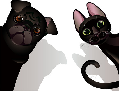 Vector illustration of funny cat and dog on white background