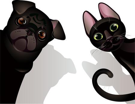Vektor-Illustration lustig Katze und Hund auf weißem Hintergrund Standard-Bild - 36864327