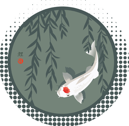 Vector illustration of Sacred Japanese Koi carp and willow branches in round shape background