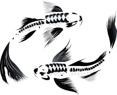 pez carpa: Ilustración artística del vector de koi carpas pareja en el agua
