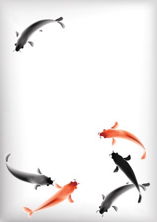 japanese koi: Vector illustration of sacred Japanese Koi carps floating in clear pond